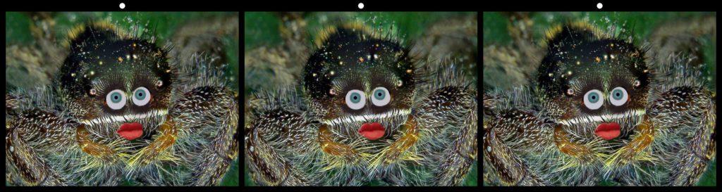 Spider Lady by Jack Muzatko, Pinole, CA USA