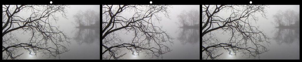 Misty Morning by Roald Synnevaag, Bergen, Norway
